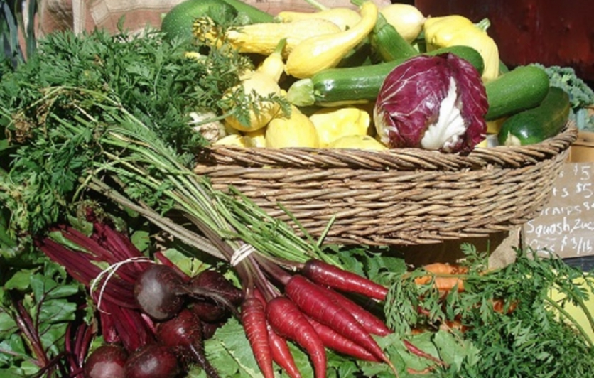 Grow great food, build great SOIL - Biodynamics!