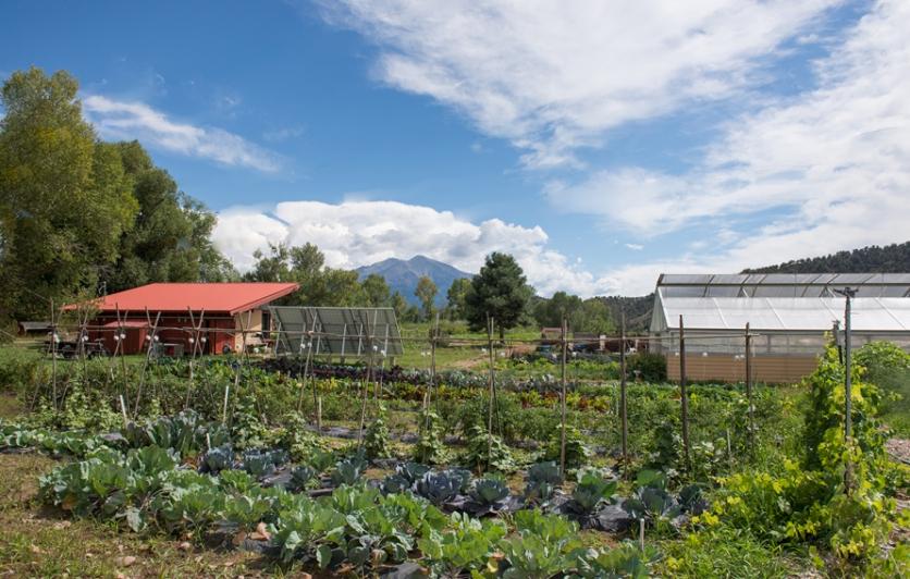 CRMS Organic Garden