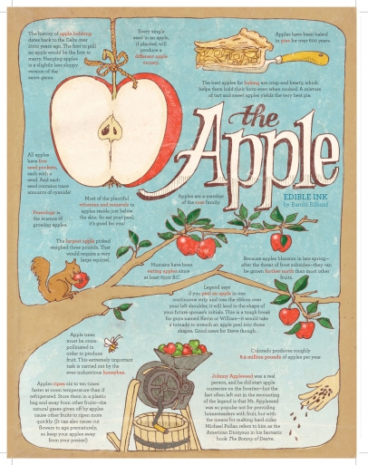 The Apple illustration by Bambi Edlund