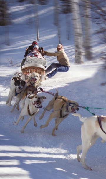 The dog sleds at Krabloonik