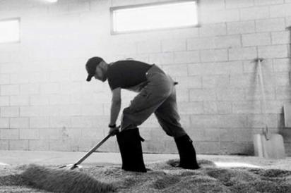 Malting barley the traditional way at Leopold Bros.