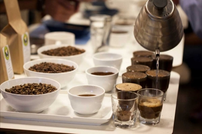 Cupping Coffee - steeping the grounds