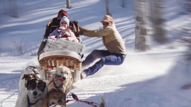The dog sleds at Krabloonik