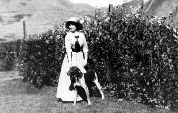 Ashton H. Potter and Sweet Pea hedge